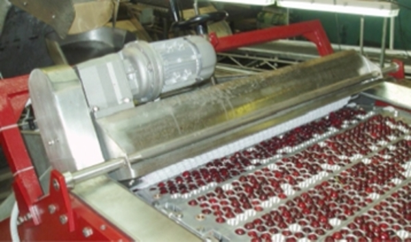 Машина для удаления косточек из вишни,  сливы/абрикоса 1600-2600 кг/час 4