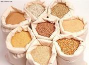 ==купим рапс,  пшеницу,  сою,  кукурузу,  ячмень,  подсолнечник==